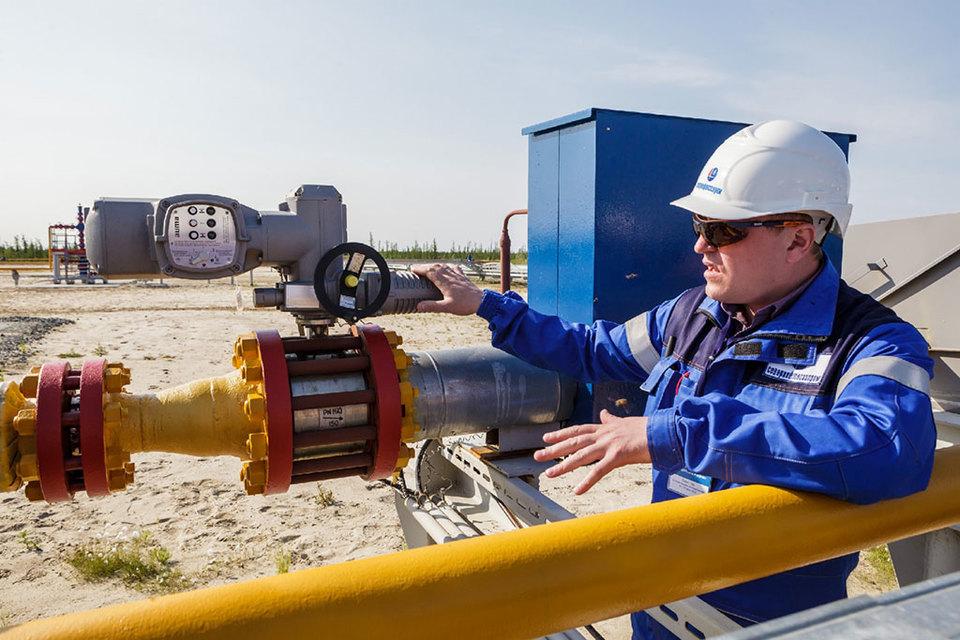 Собственные инвестиции в разработку Южно-Русского месторождения OMV оценивает в $20 млн