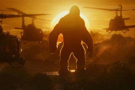 Вертолеты Конгу не страшны, у него есть противник посильнее