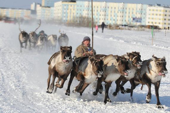 Ямало-Ненецкий АО - на втором месте по уровню доступности жилья. Здесь средняя зарплата выше - 82 936 руб. Но и жилье дороже - 56 402 руб. за 1 кв. м. В итоге на одну зарплату в регионе можно купить 1,47 кв. м жилья, доступность которого в 2016 г. выросла на 18%