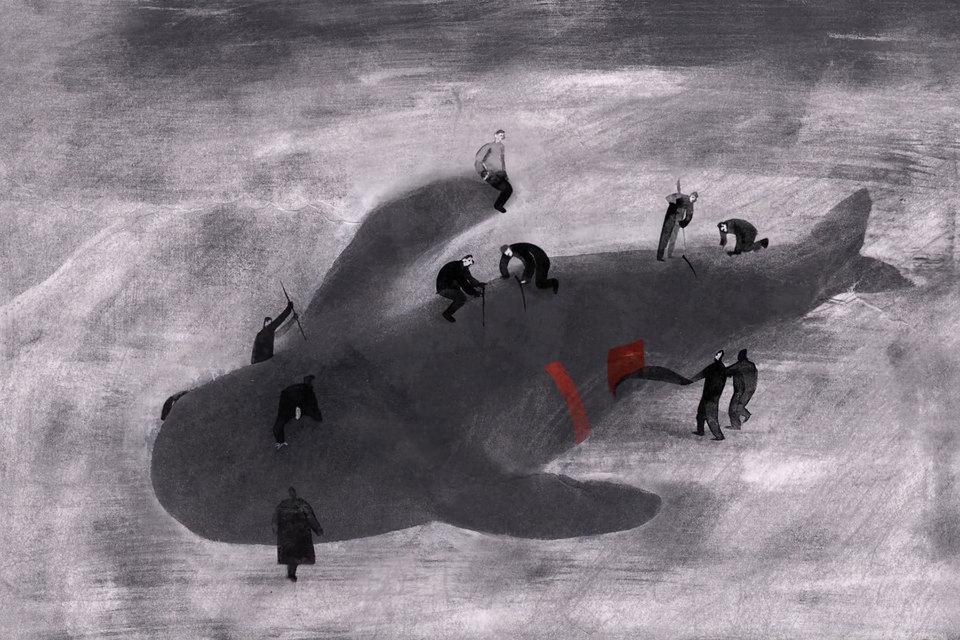 «Среди черных волн» – сказка о девушке-тюлене