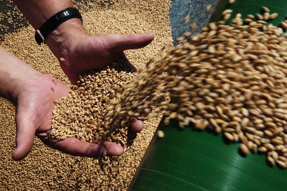 Переработка в аграрном производстве: нужно ли?