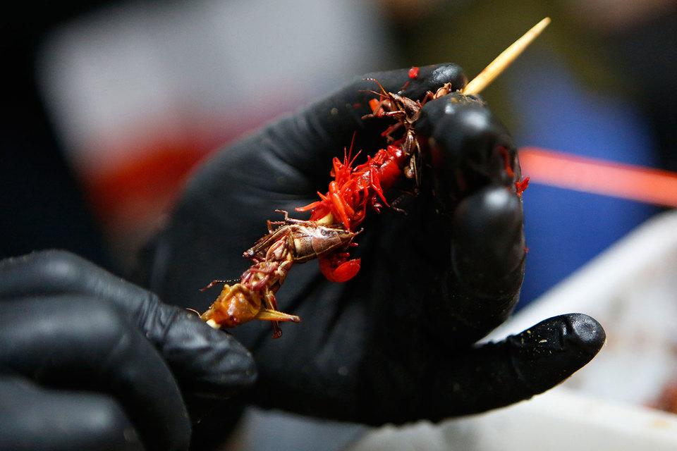 Стартап из Техаса пытается приучить американцев есть насекомых
