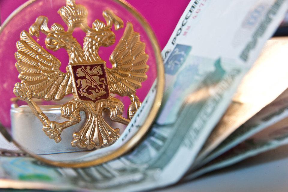 Раздачей президентских грантов НКО займутся эксперты частных фондов