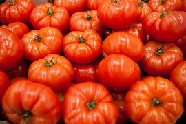 Россия не намерена снимать запрет на поставки турецких помидоров, но надеется, что турки все же откроют свой рынок для российского зерна