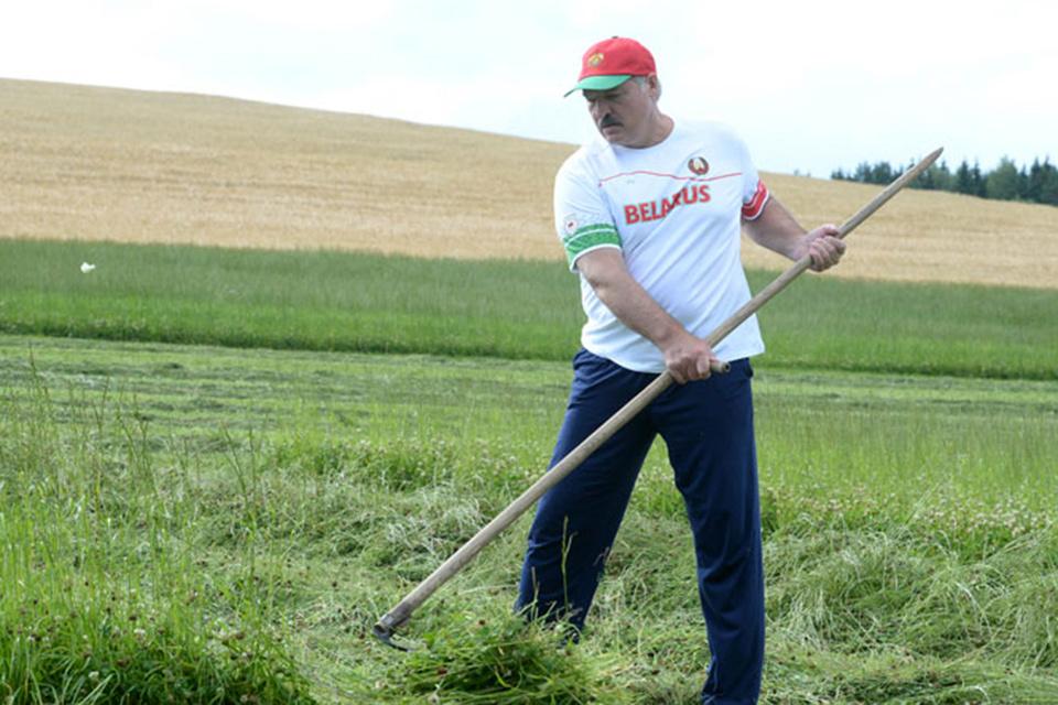 Работать должен каждый, по-прежнему убежден Лукашенко