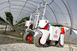 Thorvald уже может подвозить к сборщикам поддоны с кустами клубники, но вот научить роботов собирать ягоды ученые и инженеры смогут только лет через 10-20