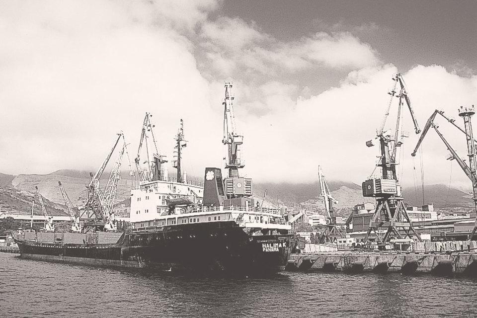 Портовый сектор напрямую связан с внешней торговлей и работает в условиях жесткой конкуренции с международными компаниями