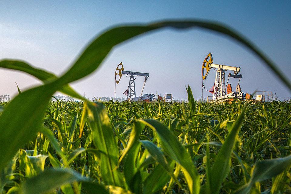 Санкции не сказались на российской нефтяной отрасли