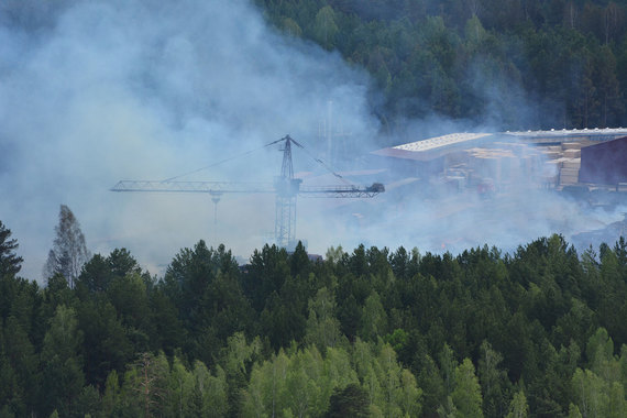 От пожара в Красноярском крае пострадали четыре лесопромышленных базы, перевалочная база и одна пилорама