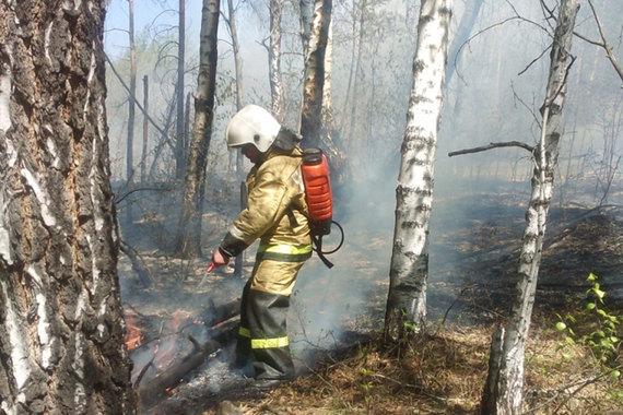 МЧС России запрещает поджигать сухую траву и мусор, а также разводить костры на территории населенных пунктов и в лесу