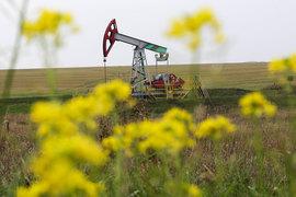 Интерес QIA к российской нефтяной отрасли очевиден
