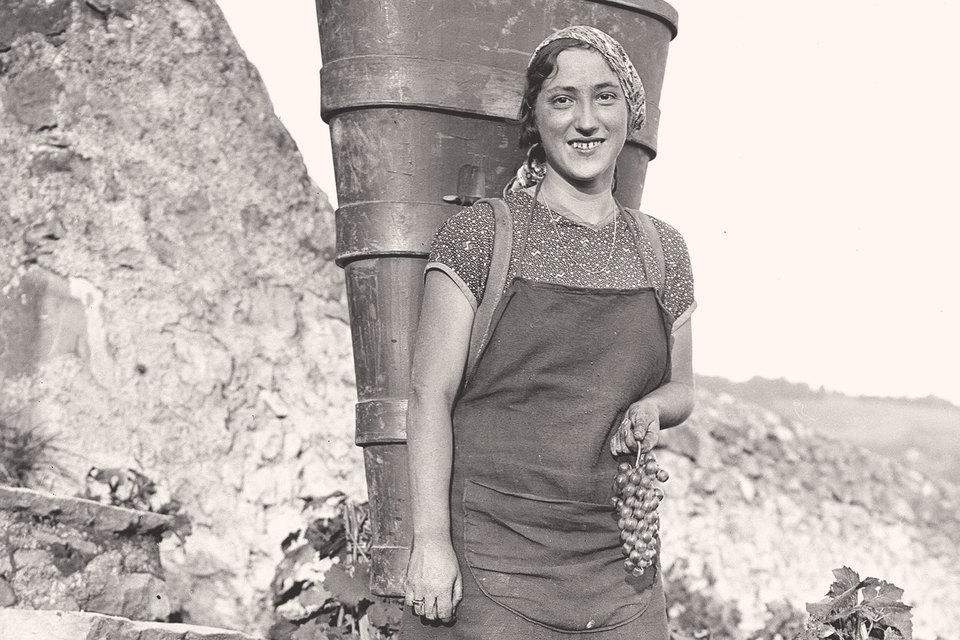 Российские стартапы как швейцарский виноград из региона Вале, растущий на гранитных склонах и собираемый вручную Jacques Boyer
