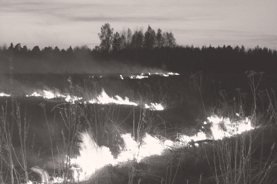 Регионы и центр никак не могут договориться о правилах сжигания травы