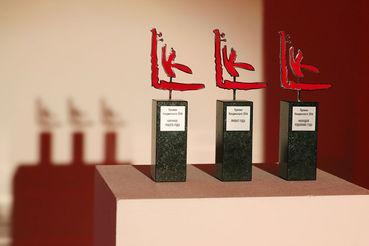 В главной номинации «Проект года» авторы всех 15 работ хорошо известны художественному сообществу и заинтересованной публике