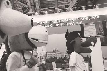 Госзакупки – кровеносная система российской экономики, констатируют авторы доклада ЦСР