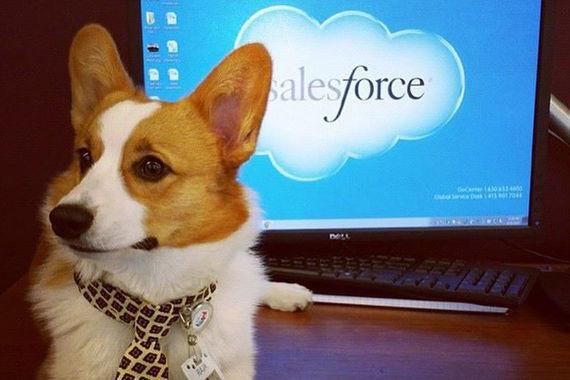 Лидером рейтинга самых инновационных компаний мира по версии Forbes в 2017 году стал производитель систем управления взаимоотношений с клиентами Salesforce
