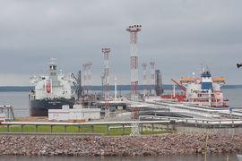 За полгода порт Высоцк обработал 9 млн т грузов