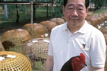 У владельца CP Group Тханина Чиараванона самые широкие интересы в сельском хозяйстве – вплоть до боевых петухов