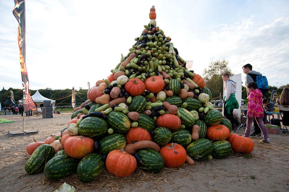 Падение цен на овощи и фрукты привело к снижению инфляции до исторического минимума