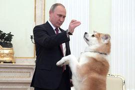 Государство должно внушать доверие, считают авторы доклада о государственном устройстве России