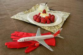 Финансовые проблемы авиакомпании, согласно Федеральным авиационным  правилам, является основанием для проверок и санкций со стороны  Росавиации