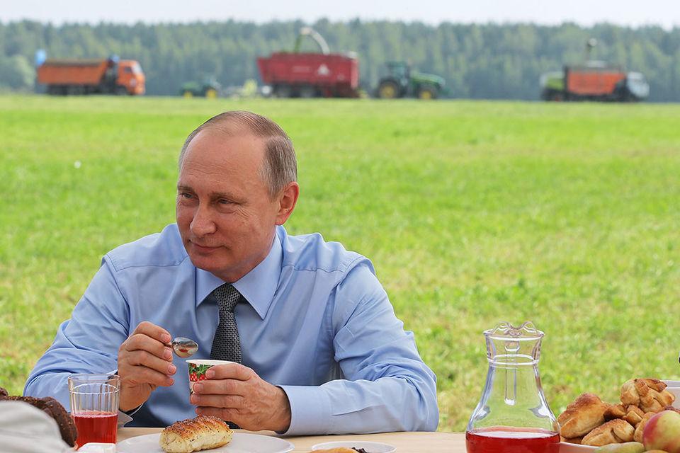 Путин обеспокоен ценами на зерно при рекордном урожае