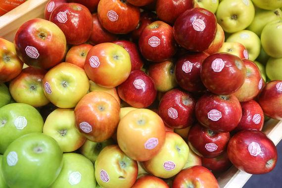 Геннадий Тимченко нашел партнера для выращивания яблок на Кубани