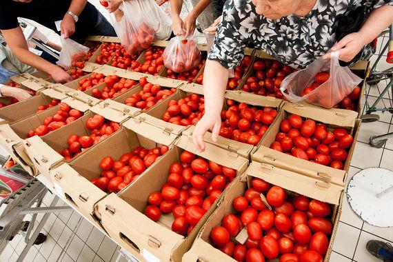 Россия снимет запрет на ввоз турецких томатов с 1 ноября