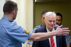 Обвинения против Младича МТБЮ выдвинул в 1995 г., главным пунктом стала резня в Сребренице в июле 1995 г.