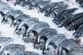 Нарушение температурного режима при доставке – одна из главных причин, почему на московском рынке рыба не лучшего качества