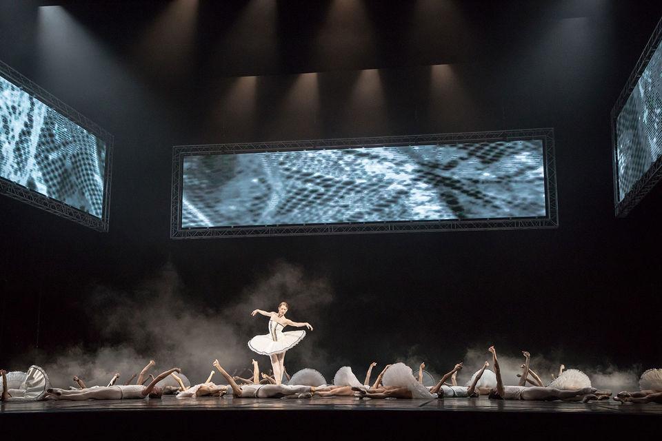 Балет «Тюль» – драма из балетной жизни
