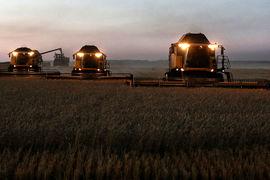Санкции для тех, кто не обрабатывает свою землю, снизили число спекулятивных инвестиций