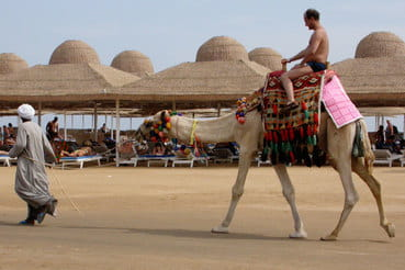Путин объявил о готовности возобновить регулярные рейсы в Египет
