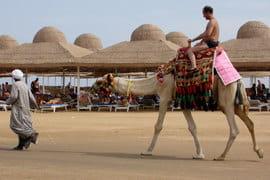 После открытия регулярного авиасообщения с Египтом стоимость туров для россиян может снизиться на 30% по сравнению с 2015 г.