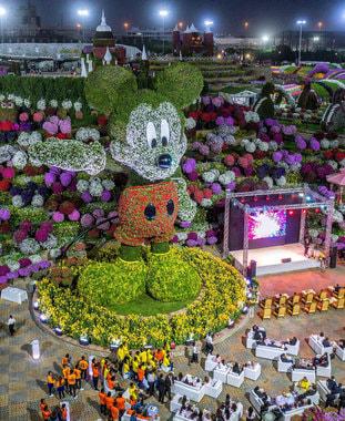 26 февраля 2018 г. Самая высокая в мире цветочная фигура Микки Мауса появилась в дубайском парке цветов Dubai Miracle Garden в честь 90-й годовщины создания этого персонажа. Высота фигуры - 18 м, фигура создана из 100 000 цветов и растений и весит 35 т