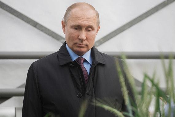 12 марта 2018 г. Президент Владимир Путин осмотрел селекционную теплицу Национального центра зерна вКраснодаре, где ему показали новые культуры, в том числе коноплю, несодержащую наркотического вещества