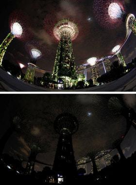 В Сингапуре погасли Супердеревья в «Саду у залива»