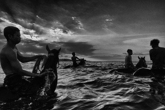 Номинация: «Спорт. Серия фотографий»Автор: Ален ШредерО чем фотографии: снимки бельгийского фотографа посвящены соревнованиям молодых жокеев на острове Сумбава в Индонезии