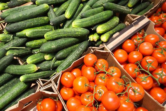 Сын губернатора Сахалинской области хочет выращивать огурцы и помидоры