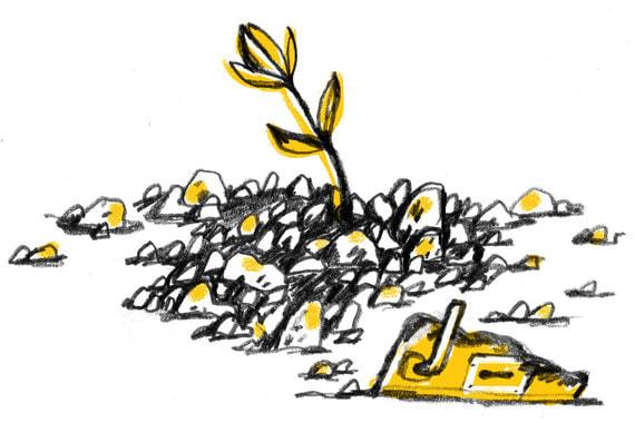 normal z4 Как завести новый бизнес после разорения старого