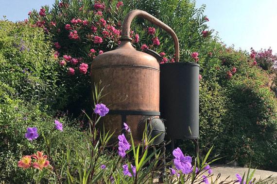 Вторым по популярности стало парфюмерное производство Fragonard, находящееся в Грассе и Эзе. Туда доехало 900 000 человек