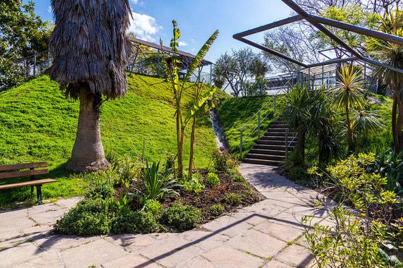 Цветочный парк «Феникс» в Ницце считается одной из основных достопримечательностей города. В 2015 г. сюда приехали 394 000 человек