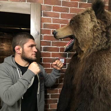 Хабиб Нурмагомедов. Действующий чемпион UFC (бои по смешанным единоборствам)