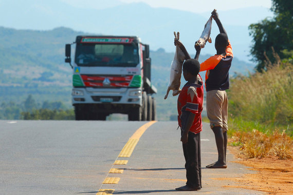 Место: 129Страна: Мозамбик