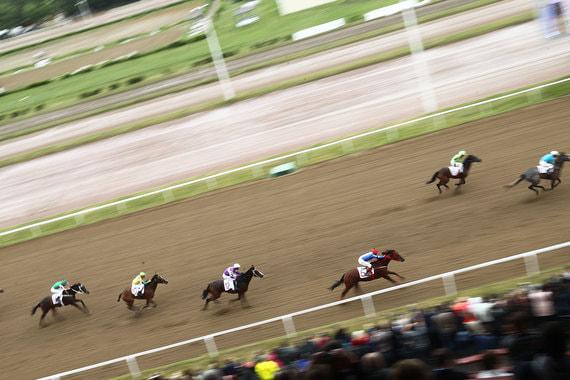 К  соревнованиям допускаются лошади четырех лет и старше чистокровной  верховой породы, принадлежащие владельцам из России, стран СНГ, а также  Абхазии и Южной Осетии