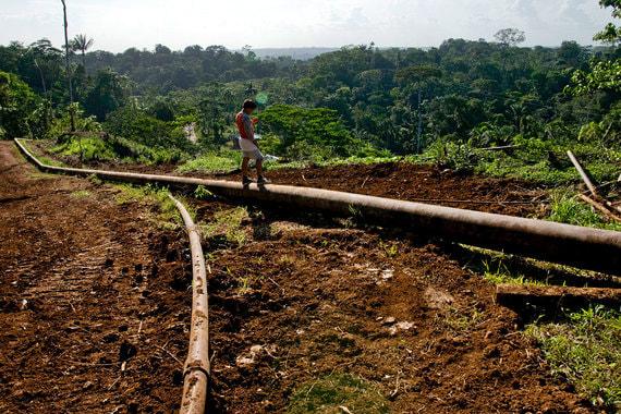 Добычу Эквадора в 2017 г. и ОПЕК, и BP оценили в531 000 баррелей в сутки. Экспорт, по данным ОПЕК, составил 385 400 баррелей в сутки