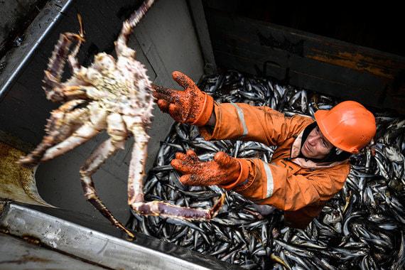 normal 16gb Рыбаки просят отменить крабовые аукционы