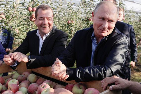 Президент Владимир Путин и премьер Дмитрий Медведев вместе побывали в яблоневых садах предприятия «Рассвет» в Ставропольском крае