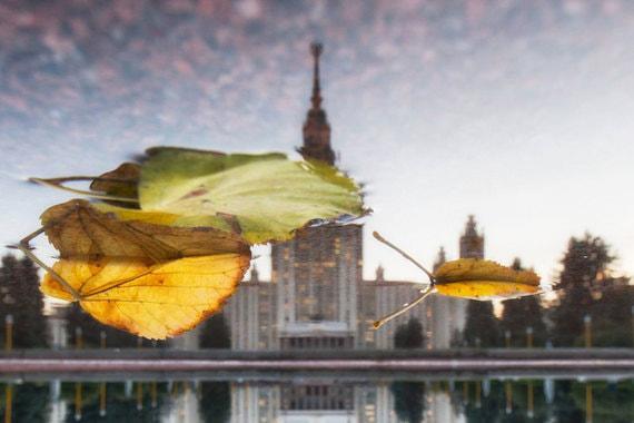 normal 103g «Золотая осень». Чем запомнится аномально теплый октябрь в Москве