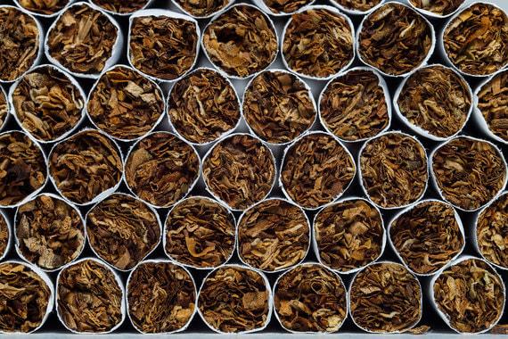 British American Tobacco закрывает фабрику в Саратове